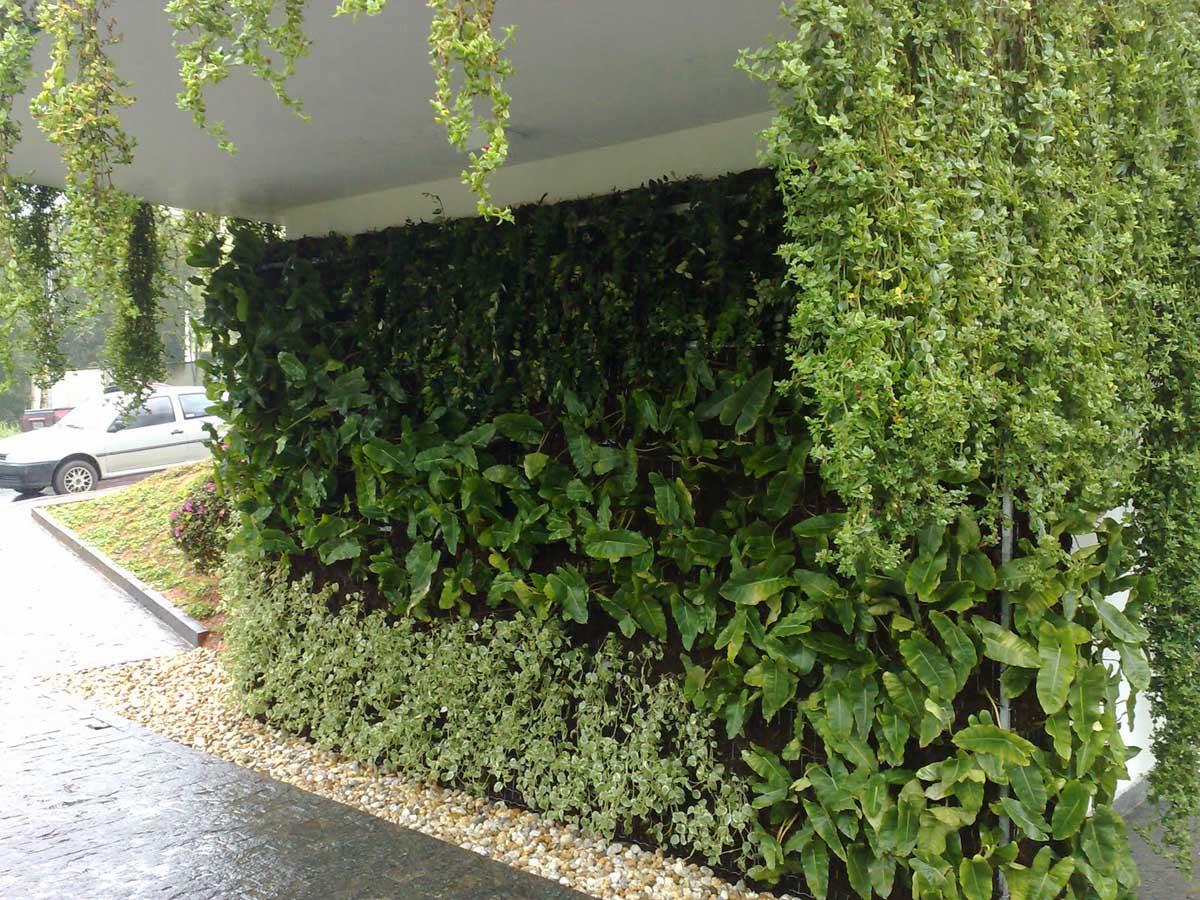 las paredes florecen con jardines verticales muros